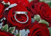 wedding-rings-287149_640